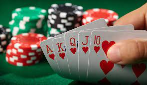 What You Get from Online Casino